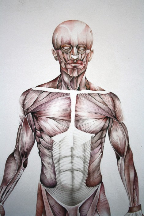 Muscle man detail, watercolour